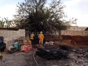 Los bomberos de Torreón tuvieron un total de 92 servicios por daños en vegetación y otros eventos.