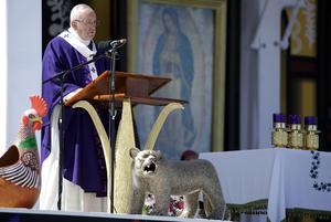 El Papa Francisco ofició una celebración eucarística en San Cristóbal de las Casas, Chiapas.