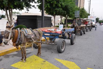 La propuesta pretende retirar a los animales de estas actividades y usar vehículos automotores.