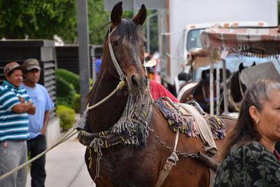 Decenas de caballos llegaron hasta la plaza mayor, donde se hizo la entrega del proyecto.