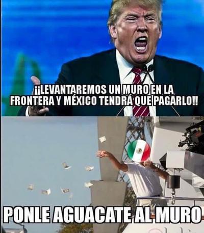 Ni Donald Trump se saldrá con la suya, poderosos mexicanos han lanzado una iniciativa para... ponerle aguacate al 'muro'.