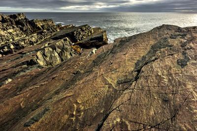 Fotografía facilitada por el Departamento de Medio Ambiente y Conservación de Canadá que muestra restos fósiles en uno de los acantilados de la reserva ecológica Mistaken Point, en Terranova.