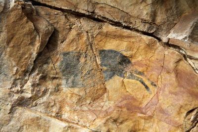 Fotografía facilitada por la consellería de Cultura del hallazgo de un nuevo yacimiento de arte rupestre levantino que se ha encontrado en el municipio de Vilafranca del Cid (Castellón), con pinturas de hace 7.000 años.