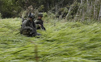 Agentes antinarcóticos de la policía hacen guardia en una zona de aterrizaje cerca de un laboratorio de coca en Calamar, en Colombia.
