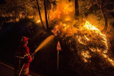 Bomberos intentan combatir el fuego, durante un incendio forestal en Sao Lourenco do Douro en Baiao (Portugal).