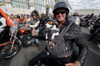 Un motociclista pasea con su perro al participar en un desfile de motocicletas Harley Davidson a lo largo de la avenida central Nevsky, marcando los días del festival Internacional de Harley, en San Petersburgo.