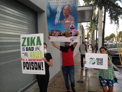 """Los vecinos del barrio de Wynwood, la """"zona cero"""" del zika en Miami, comienzan a organizarse en contra de las fumigaciones aéreas con naled, un insecticida al que algunos de ellos consideran peor incluso que el virus transmitido por el mosquito Aedes aegypti."""