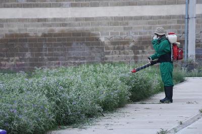 Se fumigó en los sectores afectados para evitar un brote de dengue.