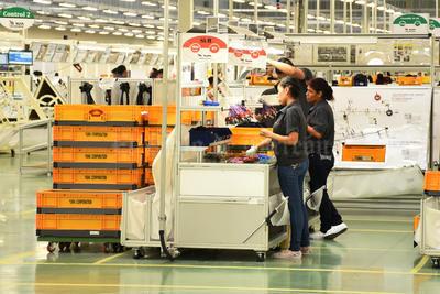 Con la suma de estos 4 mil empleos, se alcanza la cifra de 37 mil fuentes laborales en La Laguna.