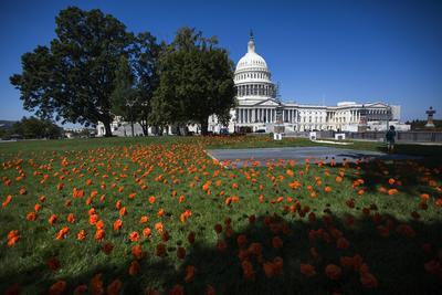 WASHINGTON (ESTADOS UNIDOS).- Vista de las flores de papel 'plantadas' por la organización 'DC por la seguridad armamentística' que representan a cada una de las víctimas fallecidas por arma de fuego desde el receso de verano -desde el 15 de julio- del Congreso, en el Capitolio, Washington DC, Estados Unidos. La organización ha colocado 2.319 flores de papel. EFE