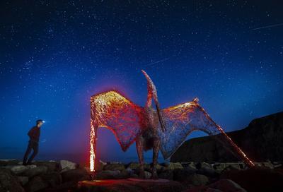 North Yorkshire, Inglaterra .- Un hombre observa una escultura de alambre de un pterodáctilo creada por el artista Emma Stothard, bajo un cielo estrellado, que forma parte del Festival Staithes de las Artes y Patrimonio en North Yorkshire, Inglaterra. Durante el festival más de 100 artistas exhiben en galerías emergentes de todo el pueblo. (AP)