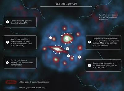 BERLÍN.- Infografía facilitada por el Observatorio Europeo Austral (ESO) que explica cómo brilla una mancha Lyman-alfa, uno de los objetos más grandes y más brillantes en el universo, cuyo intenso brillo ha sido investigado por un equipo internacional de astrónomos que han descubierto que se debe a que contiene dos galaxias en el centro que atraviesan una etapa de formación estelar que ilumina todo su entorno. EFE