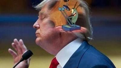 Los comentarios de Donald Trump provocaron memes en la web.