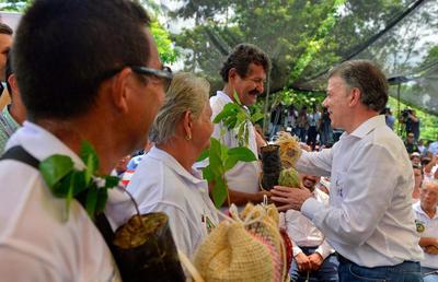 """TIBÚ (COLOMBIA).- Fotografía del mandatario Juan Manuel Santos (d) durante una visita a cacaoteros, en Tibú (Colombia). Santos afirmó hoy que le pidió a los negociadores de su Gobierno """"meter el acelerador"""" para lograr muy pronto """"un nuevo acuerdo"""" de paz con las FARC, después de que el anterior fuera rechazado en el plebiscito del pasado 2 de octubre. EFE"""