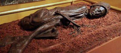 Silkeborg (Dinamarca).- Una imagen de archivo muestra El hombre de Tollund exhibido en el Museo de  Silkeborg, Dinamarca. El hombre de Tollund está considerada una de las más bien conservados cadáveres momificados de un hombre, que vivió alrededor del 350 años antes de Cristo. Fue descubierto en 1950 en la península de Jutlandia de Dinamarca. El cuerpo del pantano ha estado en exhibición en el Museo de Silkeborg en Sealand, Dinamarca. Después de su descubrimiento, el cuerpo  había sido enviado al Museo Nacional de Dinamarca en Copenhague, donde el conservador del museo Brorson Christensen cortó el dedo del pie durante los esfuerzos de conservación, dijo su hija Birte Brorson  mientras mostraba el dedo del pie en su casa en el norte de Sealand. EFE
