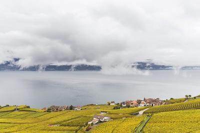 LAVAUX (SUIZA).- Vista general del pueblo Rivaz desde los viñedos de Lavaux ubicado en el lago Lemán en Suiza. Los viñedos de Lavaux está en la lista del Patrimonio de la Humanidad de la Unesco. EFE