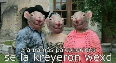 Los memes sobre los Xv de Rubí se popularizaron rápidamente en las redes sociales.