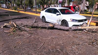 Sólo daños materiales en bulevar Dolores del Río