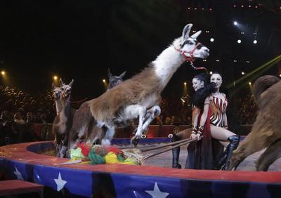 Las artistas Marek Jama actúan durante la ceremonia de la edición 41 del Festival Internacional de Circo de Monte-Carlo.