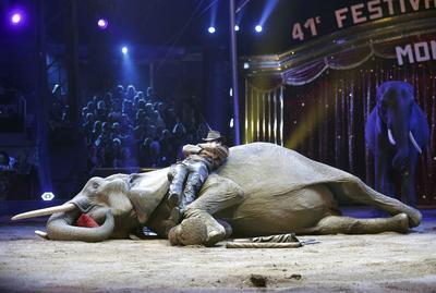 El artista Erwin Frankello, gandor del Premio payaso de plata, actúa durante la ceremonia de la edición 41 del Festival Internacional de Circo de Monte-Carlo
