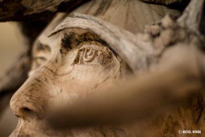 Las piezas de Colmenero son llamativas en primera instancia debido a la rudeza que aparentan.