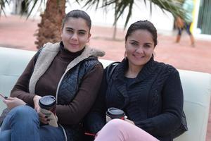 04022017 POSAN PARA LA CáMARA.  Soraya y Paulina.
