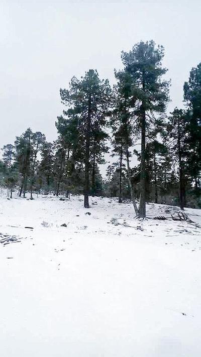 PC invitó a la ciudadanía a tomar precauciones ante las inclemencias del tiempo que ocasiona la séptima tormenta invernal en el estado de Durango. (JUAN PALMA)