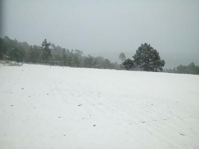 Comunidad de Lajas con nevada de esta mañana.