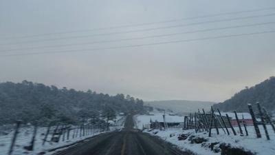 Protección Civil Canelas reporta caída de nieve en la zona sierra, desde Vascogil hasta Ojito de Camellones, son 7 municipios con nevadas.