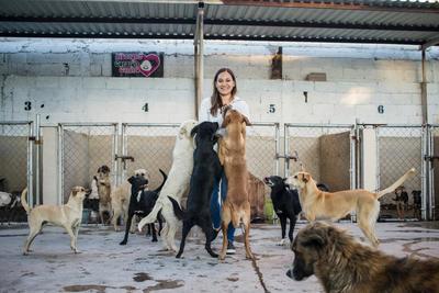 """""""Ayudarlos es mi pasión, me hace feliz verlos que logran encontrar una nueva casa. Me hace feliz sacarlos de un problema social y darles un hogar. A veces me pongo a llorar cuando se va un perro que tiene muchos años aquí pero me hace feliz. Es una forma de ayudar a la sociedad""""."""