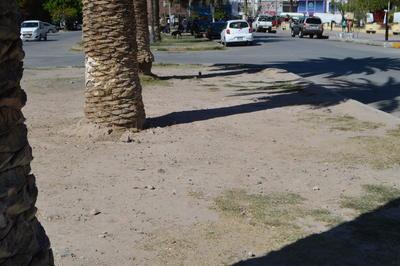 González advirtió que los comerciantes están dispuestos a utilizar la fuerza en caso de que se traten de construir nuevos monumentos, incluso si se trata de las mismas autoridades.