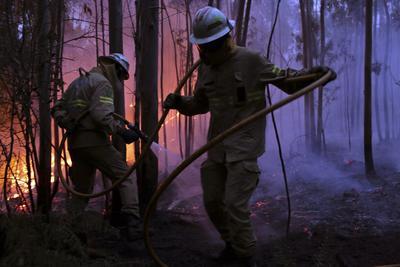 """Los bomberos esperan """"dentro de poco"""" extinguir dos de los cuatro frentes que permanecen activos."""