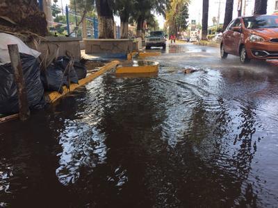 En la zona de las facultades el agua circulaba por debajo de la banqueta con corriente.
