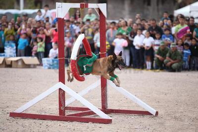 También se realizó la presentación del entrenamiento de Binomios Caninos