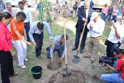 En el marco del día mundial del árbol, ciudadanos de Torreón acudieron al Bosque Venustiano Carranza a reforestar.