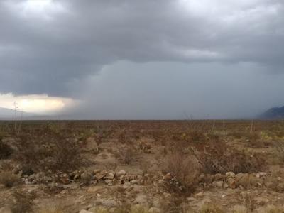Así lucía la carretera Monterrey-Monclova en el kilómetro 70 tras las lluvias registradas.