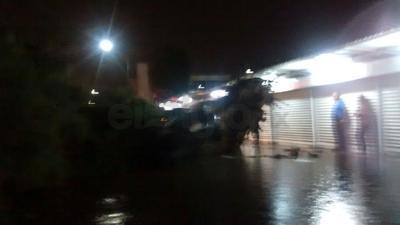 El viento derribó un pinabete que aplastó un carro en Leandro Valle entre Juárez e Hidalgo de Torreón. No hubo lesionados.