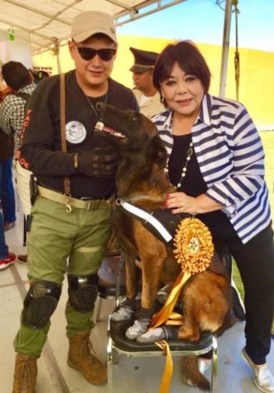 En Coahuila se ha promovido la protección a los animales, por lo que ya se cuenta con una Fiscalía Especial.
