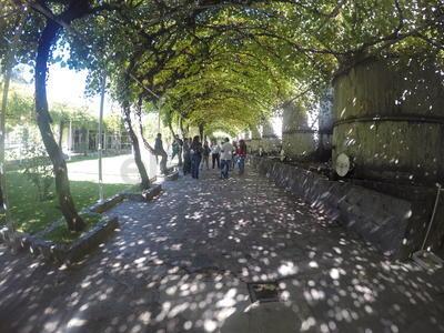 La Ruta del Vino es uno de los nuevos productos turísticos del Pueblo Mágico de Parras.