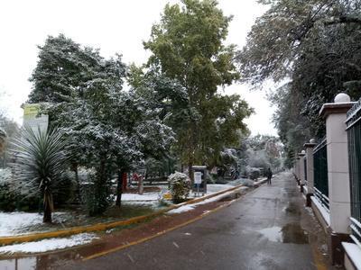 Se pronostica que las nevadas continuarán hasta el sábado.