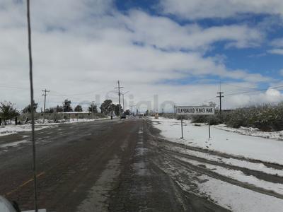 Tlahualilo reporta daños en al menos 200 viviendas.