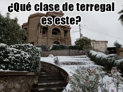 Los memes no perdonan la nevada