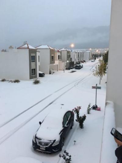 La ciudad de Saltillo se 'pintó' también de blanco debido a las bajas temperaturas registradas.