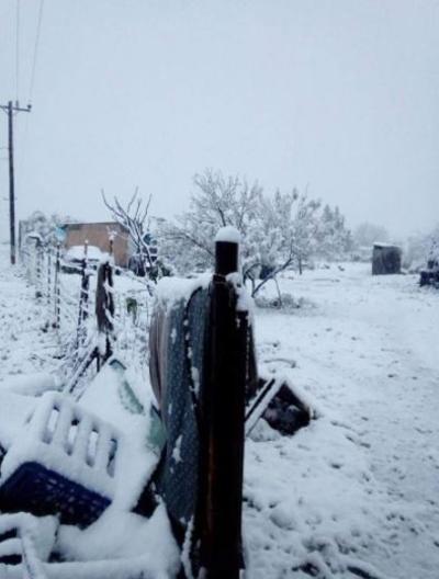 En el ejido Santa Eulalia, del municipio de Zaragoza, las bajas temperaturas ocasionaron que la nieve se hiciera presente.