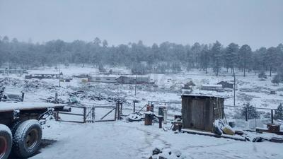 La noche de este jueves reportó la Unidad de Estatal Protección Civil, nevadas en Ciénega de la Vaca, del municipio de Guanaceví, Durango.