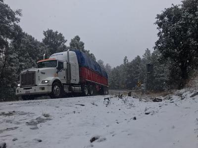 Minutos después de las 08:50 horas de este viernes habitantes de algunas localidades de Pueblo Nuevo y Durango, presenciaron la caída de nieve.