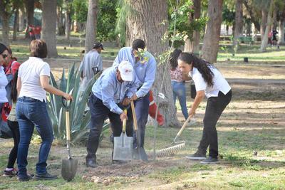 3 de julio. Reforestación | En el interior del Bosque Venustiano Carranza que sigue enfrentando fuertes problemas de sequía, se inició una campaña de reforestación.