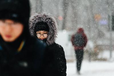 Estadounidenses se defienden del clima como pueden.
