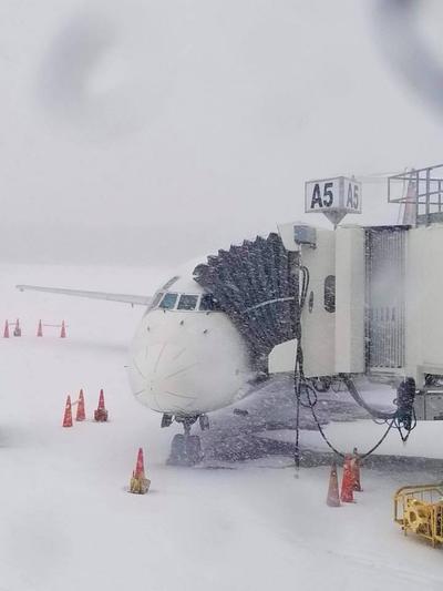 Aeropuertos como el de Charleston en Carolina del Sur, se han visto afectados.