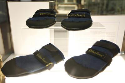 Con el calzado donado, Frida ha pisado zonas de desastre en México y otros países como Ecuador, Haití y Guatemala.